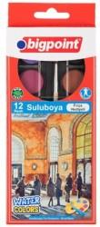 Bigpoint - Bigpoint Suluboya 12 Renk