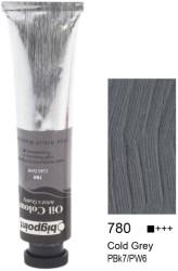 Bigpoint - Bigpoint Yağlı Boya 200 ml Cold Grey 780