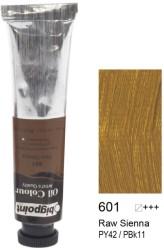 Bigpoint - Bigpoint Yağlı Boya 200 ml Raw Sienna 601