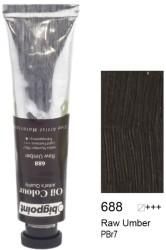 Bigpoint - Bigpoint Yağlı Boya 200 ml Raw Umber 688