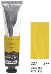 Bigpoint - Bigpoint Yağlı Boya 200 ml Yellow Mid 227