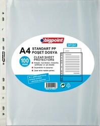 Bigpoint - Bigpoint Poşet Dosya Standart 40 Mikron 100'lü Paket