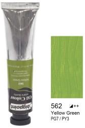 Bigpoint - Bigpoint Yağlı Boya 200 ml Yellow Green 562