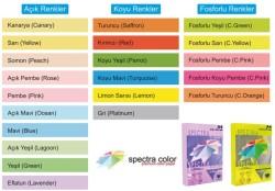 Spectra Color - Spectra Color Renkli Fotokopi Kağıdı A4 80gr - 1 Koli (5 pk x 500 sy.)